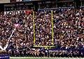 Minnesota Vikings Fans.jpg