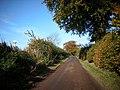 Minor road near Burnfoot Farm - geograph.org.uk - 1016806.jpg
