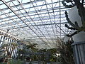 Miracle Planet Museum of Plants in 2013-4-27 No,7.JPG