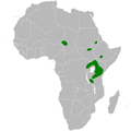 Mirafra albicauda distribution map.png