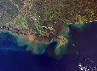 Mississippi River Delta - The Mississippi River Delta, showing the sediment plumes from the Mississippi and Atchafalaya Rivers, 2001.