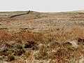 Moorland off the New Luce to P-enwhirn road - geograph.org.uk - 163832.jpg