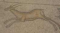 Mosaic of a gazelle Ceasarea israel (cropped).jpg