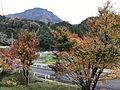 Mount Kuroiwayama and red leaves.jpg