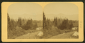 Mountain landscape, from Robert N. Dennis collection of stereoscopic views.png