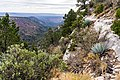 Munds Mountain Trail (24980731778).jpg