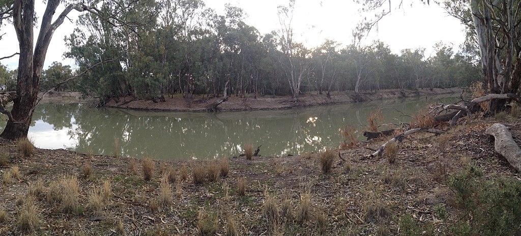 Murrumbidgee River at the Mamanga campground in the Yanga National Park