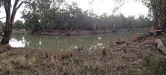 Yanga National Park - Murrumbidgee River at the Mamanga campground