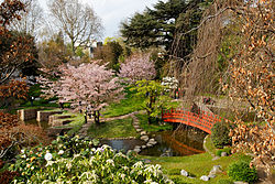 jardn japons en el museo albertkahn paisajismo