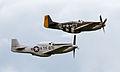 Mustangs (7582601870).jpg