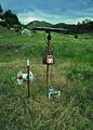 NRCSCO01096 - Colorado (1571)(NRCS Photo Gallery).jpg