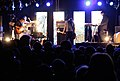 Naked Lunch, Donauinselfest 2009b.jpg