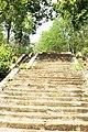 Nalitabari Upazila, Bangladesh - panoramio (1).jpg