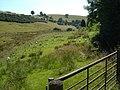 Nant Llys valley at Wern-y-Glyn - geograph.org.uk - 205804.jpg