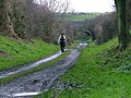 National Cycleway No.1 - geograph.org.uk - 89262.jpg