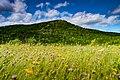 National Park Gros Morne Newfoundland (40651072694).jpg