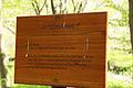 Nationalpark Hainich-Erlebnispfad Feensteig-by-Leila-Paul-IMG 3975 04.JPG