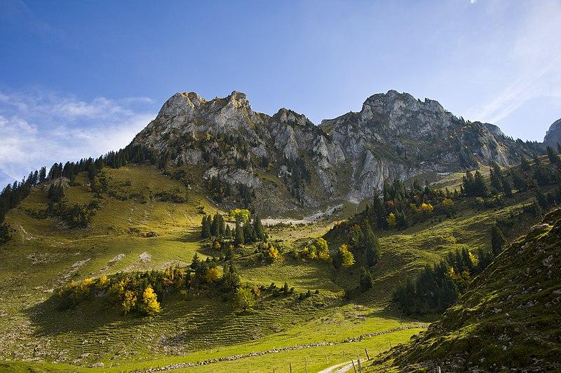 File:Naturpark Gantrisch 014.jpg