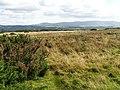 Near Drigg - geograph.org.uk - 47569.jpg