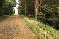Nearly 29 km hike on the former railway Kuldīga-Alsunga - panoramio (7).jpg