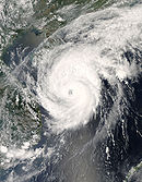 Typhoon Neoguri on April 17