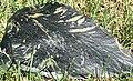 Nephrite jade ventifact (Precambrian; Granite Mountains, Wyoming, USA) 6.jpg
