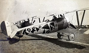 Nieuport 24 with fancy paintjob.jpg