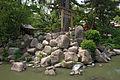 Nishinomiya-jinja06nt3200.jpg