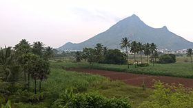 Picture of Arunachala Hill taken from outside town