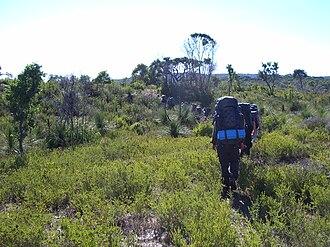 Outward Bound Australia - Outward Bound School Group in Walpole-Nornalup National Park