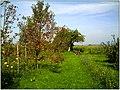 October 2013 - Gundelfingen - Ernte - Master Black Forest Photography - panoramio.jpg