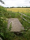 Ogham stone by side of lane, Ballyboodan, Knocktopher, Co. Kilkenny - geograph.org.uk - 206902.jpg