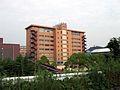 Okayama Shoka University.jpg