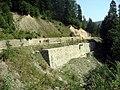 Okolí přehrady Gura Apei (2).jpg