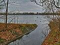 Olchinger See, Zufluss am Südende.jpg