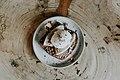 Onyx Coffee Lab, Bentonville, United States (Unsplash j3Y8xGrx0n8).jpg