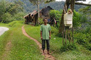 Tapah - A Semai man in Tapah, Perak, Malaysia.