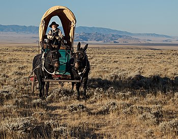 Oregon National Historic Trail in Wyoming.jpg
