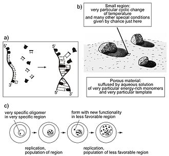 Hans Kuhn - (a) Modeling emergence of first replicating strand (oligomer R). (b) Very particular location on the prebiotioc planet. Arrow: small region, very particular cyclic change of temperature and many other special conditions given by chance just here. (c) Evolution of increasingly complex self-reproducing forms by populating increasingly unfavorable regions.