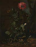 Otto Marseus van Schrieck - Still Life with Poppy, Insects, and Reptiles, ca 1670.jpg