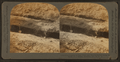 Out-cropping of coal veins near earth's surface along the banks of a stream, Scranton, Pa., U.S.A, from Robert N. Dennis collection of stereoscopic views.png