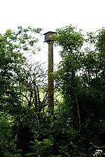 File:Owl roosting box - geograph.org.uk - 666368.jpg