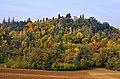 PARCO FOLA - Albinea (RE), Italy - October 31, 2009 - panoramio.jpg