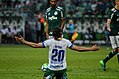 Palmeiras x Chapecoense (41114269304).jpg