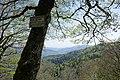 Panorama depuis la Tête du Chat sauvage.jpg