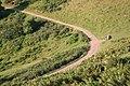 Parabolic Path, Herefordshire Beacon - geograph.org.uk - 519576.jpg