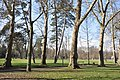 Parc de la Pépinière, Nancy, Lorraine, France - panoramio.jpg