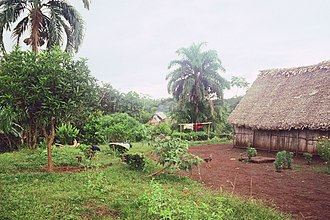 Darién Gap - Village of Paya in 1996. The central hut was used both for civic meetings and for religious rituals. Foreign visitors were not allowed inside.