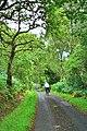 Peaceful Road, Appin - geograph.org.uk - 53707.jpg