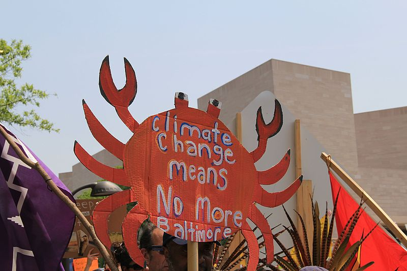 "File:People's Climate March 2017 in Washington DC 19 - Sign in shape of crab, ""Climate change means no more Baltimore"".jpg"
